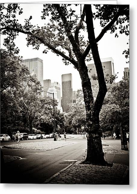 Greeting Card featuring the photograph City Contrast by Sara Frank