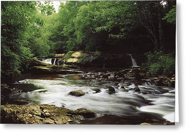 Clare River, Clare Glens, Co Tipperary Greeting Card by The Irish Image Collection