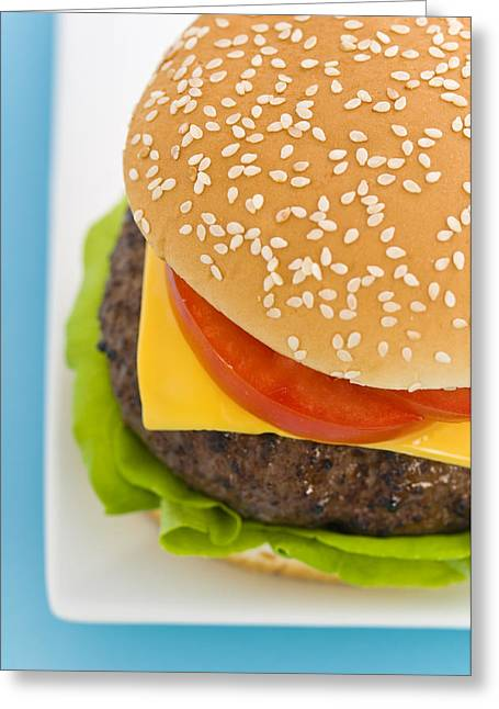 Classic Hamburger With Cheese Tomato And Salad Greeting Card by Ulrich Schade