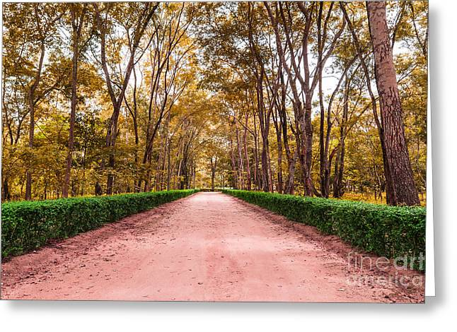 Clay Road In The National Park Greeting Card by Mongkol Chakritthakool