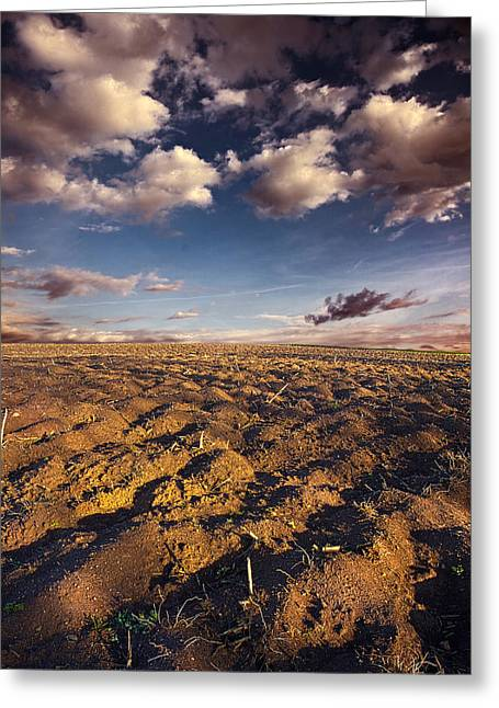 clean Dirt Greeting Card by Phil Koch