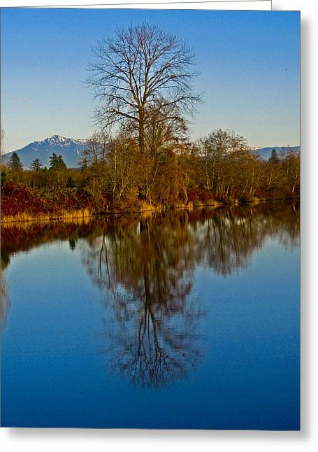 Clear And Cold Greeting Card by Seth Shotwell