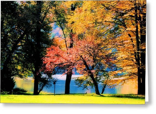 Clear Creek Autumn Greeting Card by Darlene Bell