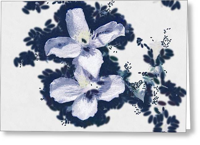Clematis In Blue Greeting Card