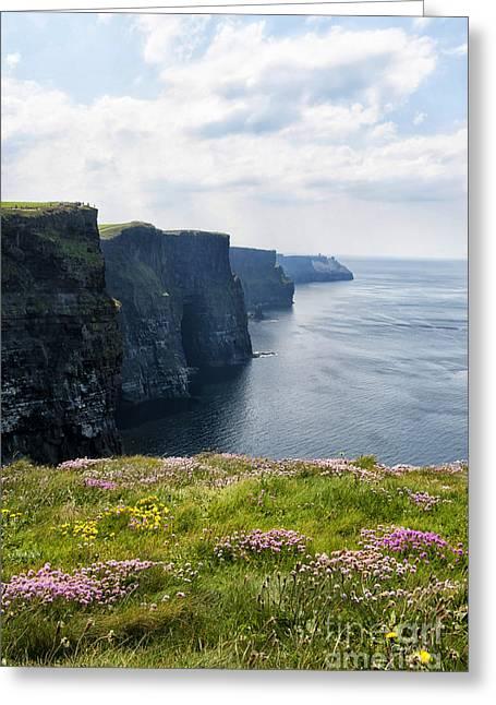 Cliffs Of Moher In Spring Greeting Card by Cheryl Davis