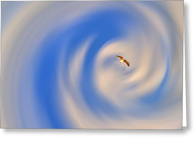 Cloud Swirl  Greeting Card by Emily Stauring