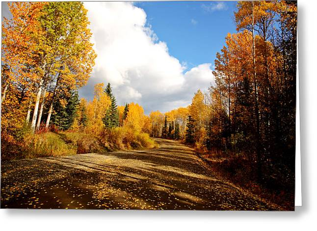 clouds and autumn leaves along British Columbia backroad Greeting Card