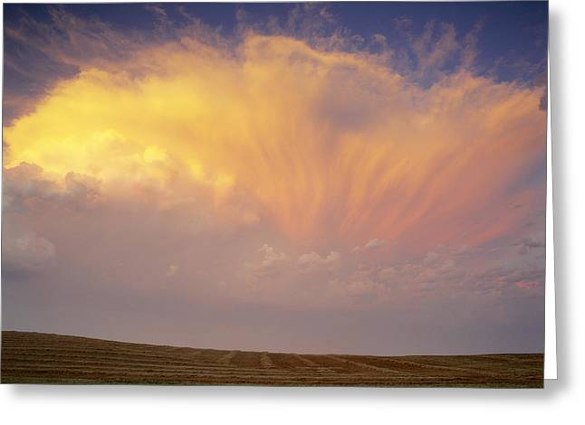 Clouds Over Canola Harvest, Saint Greeting Card by Yves Marcoux