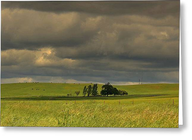 Greeting Card featuring the photograph Clouds by Rima Biswas