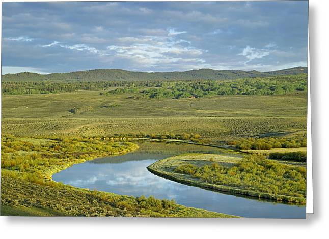 Cloudy Skies Over Green River Bridger Greeting Card by Tim Fitzharris