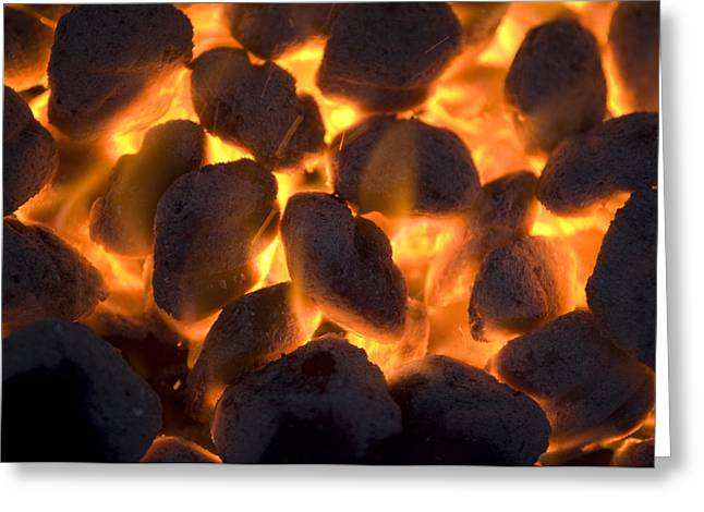 Coals On A Campfire Grill At The 4-h Greeting Card by Joel Sartore