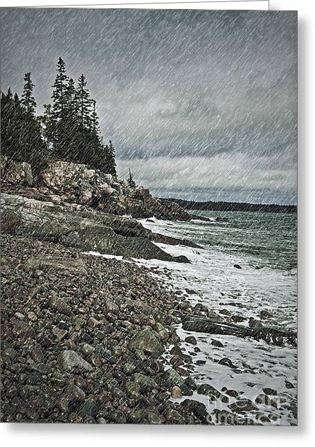 Coastal Gail Greeting Card