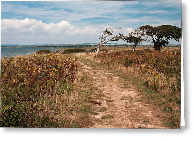Greeting Card featuring the photograph Coastal Path by Shirley Mitchell