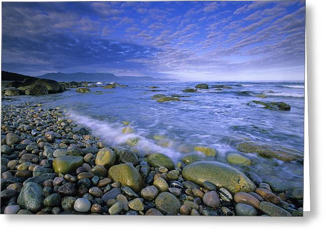 Coastline And Waves, Gros Morne Greeting Card