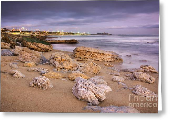 Coastline At Twilight Greeting Card by Carlos Caetano