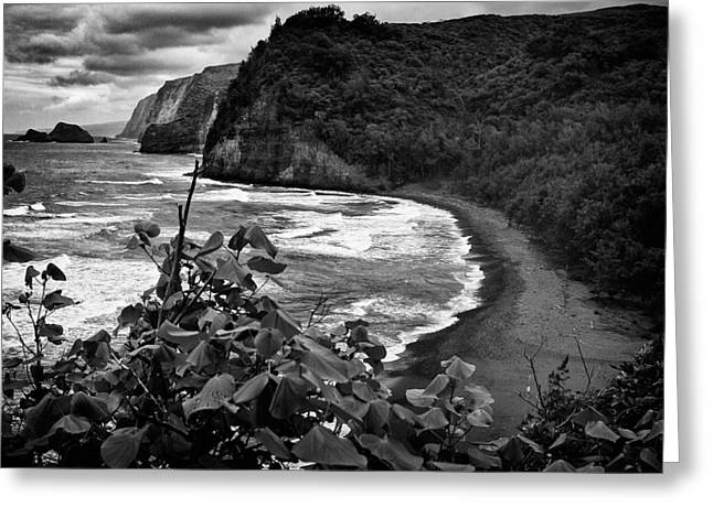 Coastline Greeting Card by Karl Voss