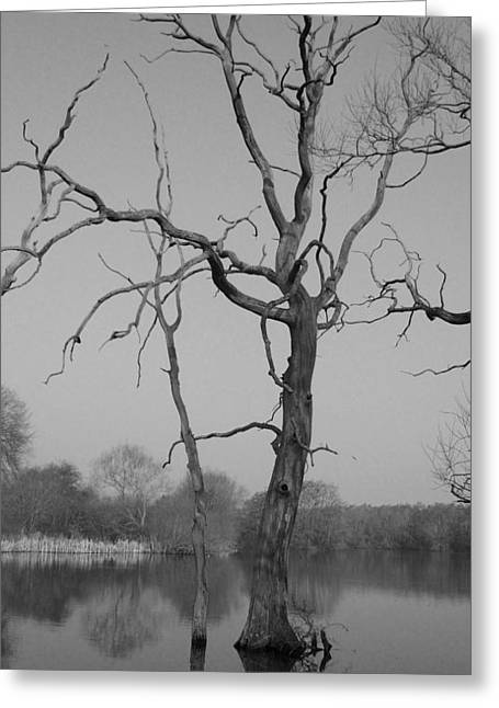 Coate Water Greeting Card