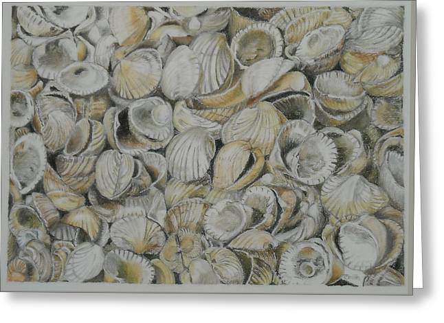 Cockle Shells Greeting Card