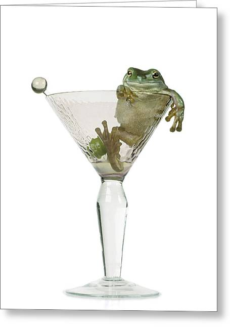 Cocktail Frog Greeting Card by Darwin Wiggett