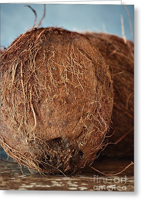 Coconut Greeting Card by HD Connelly