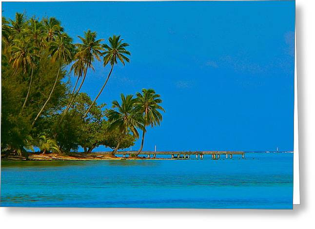 Greeting Card featuring the photograph Coconuts Anyone by Eric Tressler
