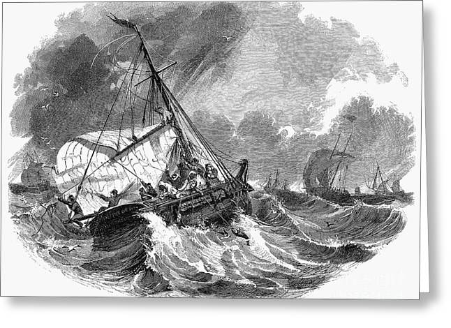 Cod Fishing, 1876 Greeting Card