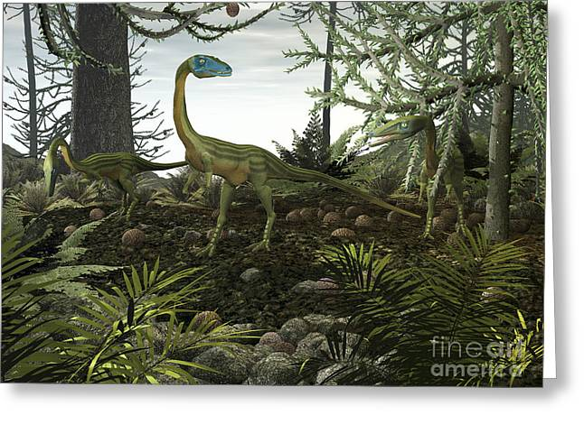 Coelophysis Dinosaurs Walk Amongst Greeting Card by Walter Myers
