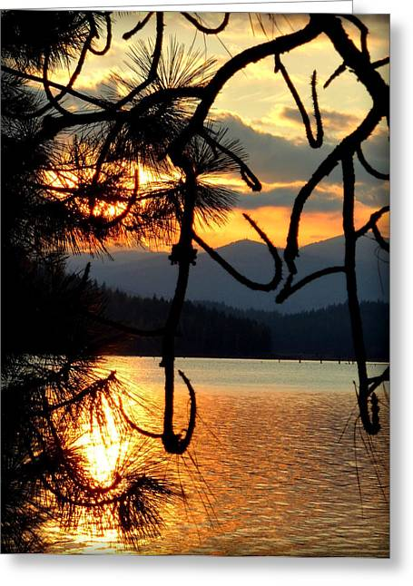 Coeur D'alene Lake Sunset Greeting Card by Cindy Wright