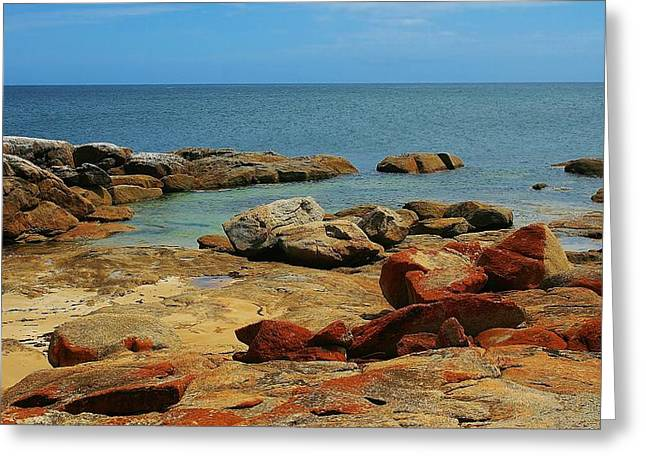 Coffin Bay Np 02 Greeting Card by David Barringhaus