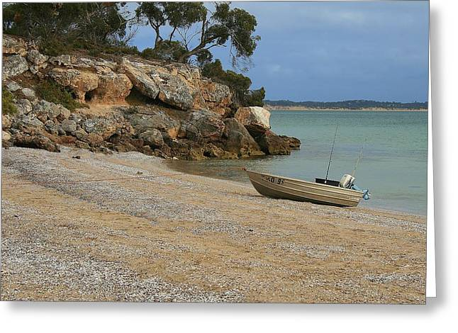 Coffin Bay Np Greeting Card by David Barringhaus