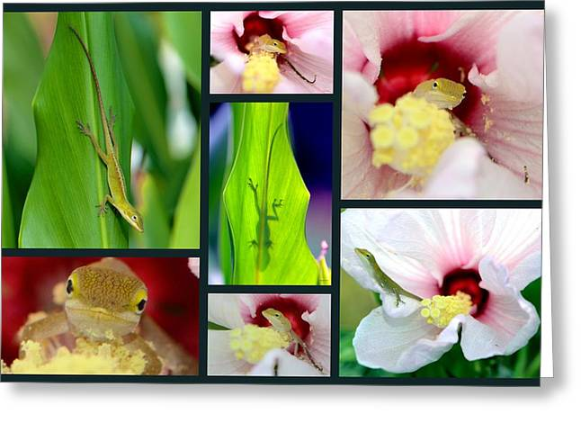 Greeting Card featuring the photograph Collage 001 by George Bostian