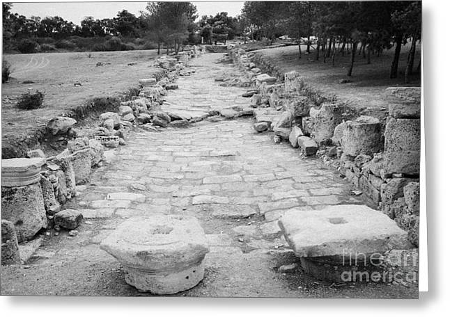 Colonnaded Street In The Ancient Site Of Salamis Famagusta Turkish Republic Of Northern Cyprus Trnc Greeting Card by Joe Fox