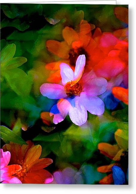 Color 106 Greeting Card by Pamela Cooper
