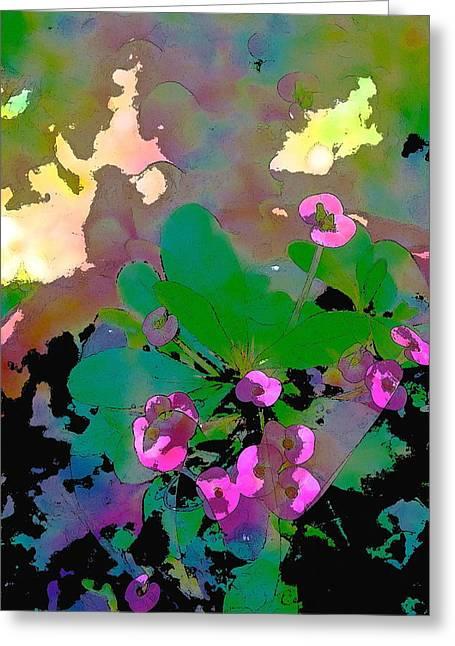Color 116 Greeting Card by Pamela Cooper