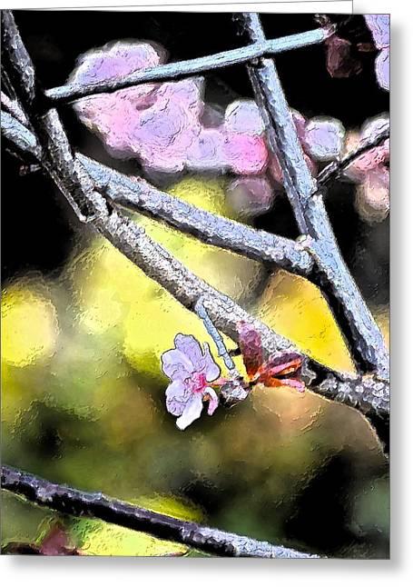 Color 62 Greeting Card by Pamela Cooper