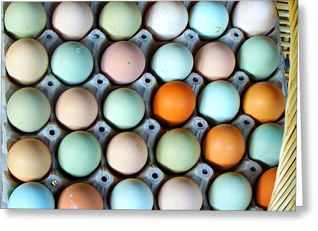 Color Eggs  Greeting Card