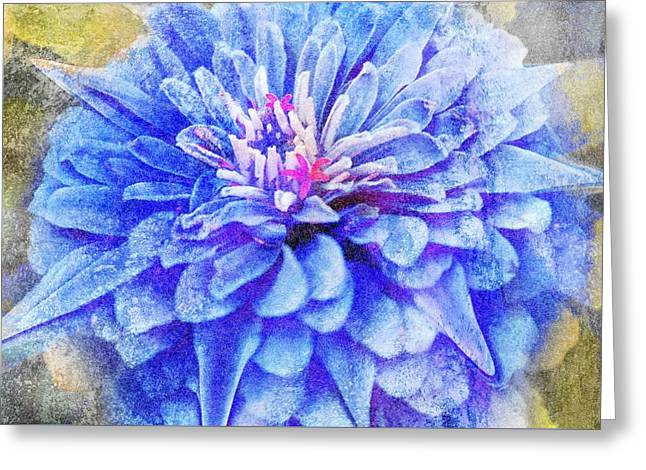 Color Symphony II Greeting Card