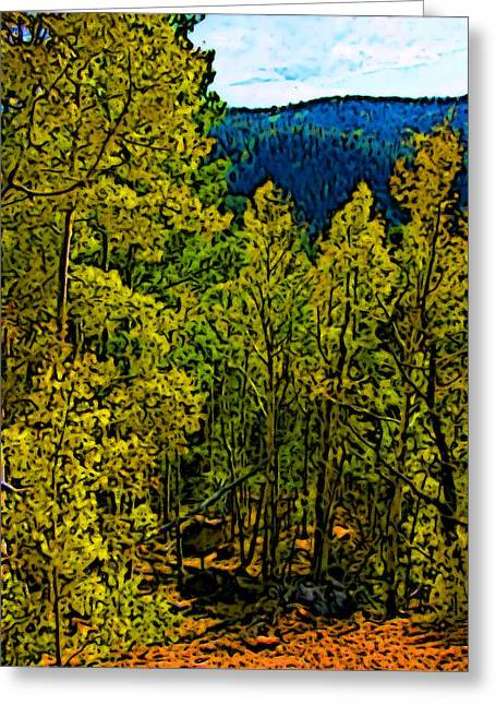 Colorado Aspens Greeting Card by Howard Perry