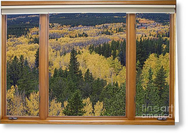 Colorado Autumn Picture Window Frame Art Photos Greeting Card by James BO  Insogna