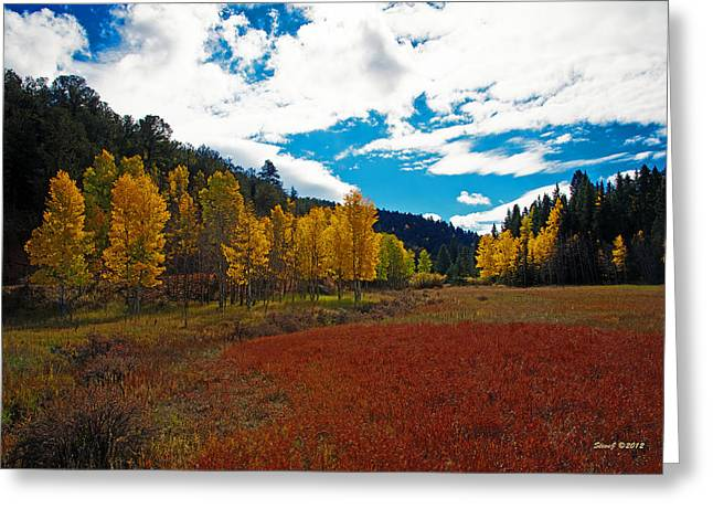 Colorado Mountain Autumn View Greeting Card by Stephen  Johnson