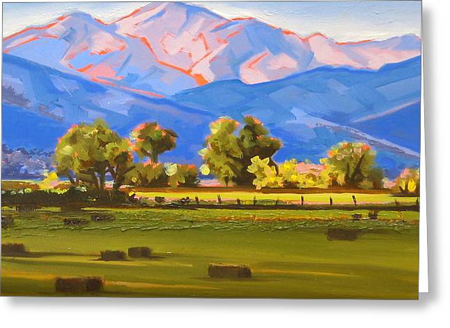 Colorado Pasture Greeting Card