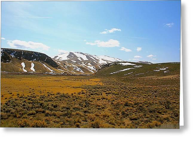 Colorado Spring Time Greeting Card