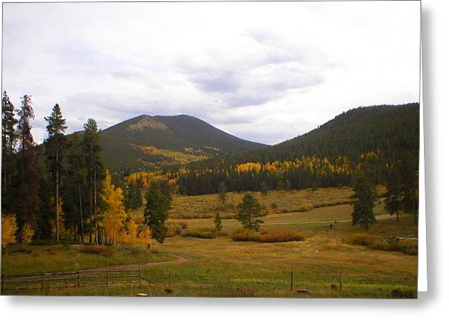 Colorado Trails In Autumn Greeting Card