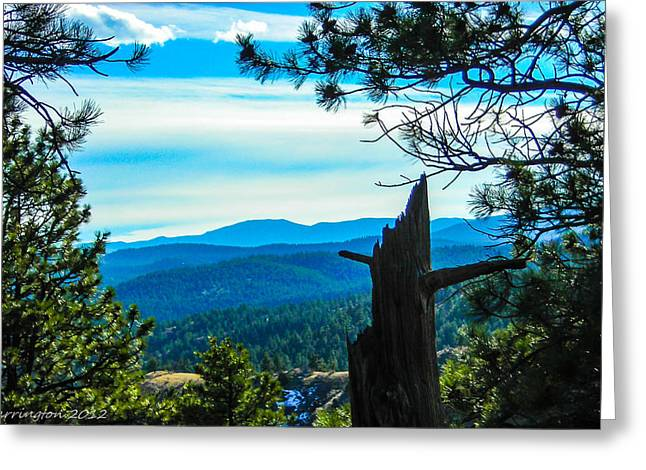 Greeting Card featuring the photograph Colorado View by Shannon Harrington