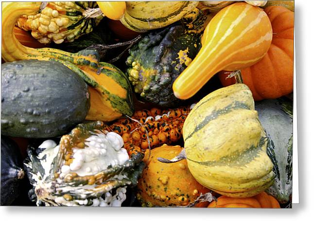 Colored Gourds Greeting Card by Richard Gregurich