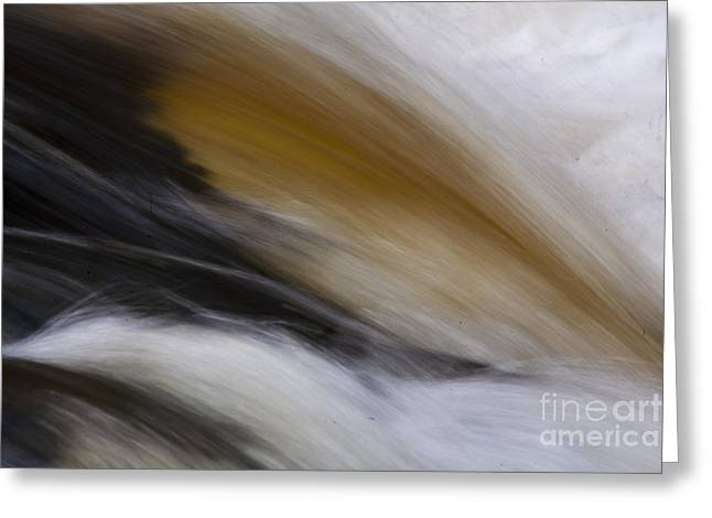 Colored River Greeting Card by Heiko Koehrer-Wagner