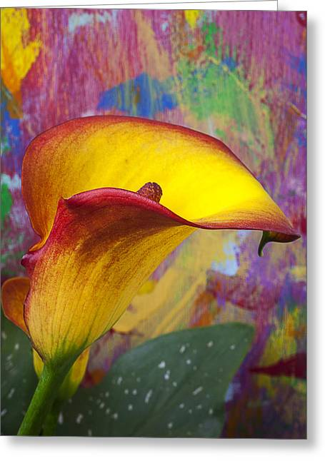 Colorful Calla Lily Greeting Card by Garry Gay
