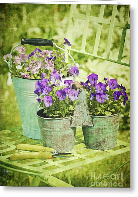 Colorful Spring Flowers On Garden Chair Greeting Card by Sandra Cunningham