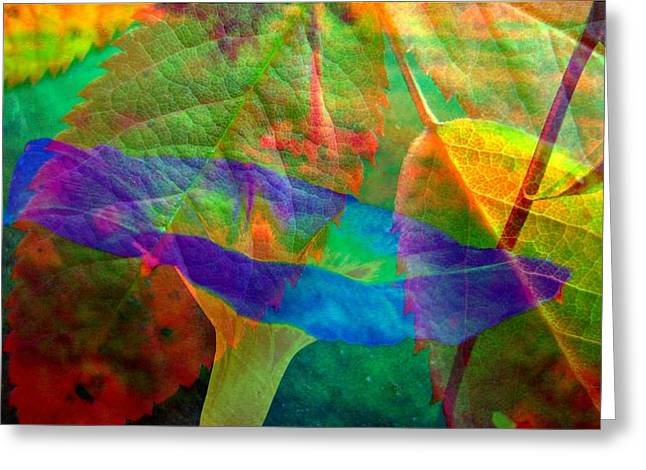 Colors Of Autumn Greeting Card by Shirley Sirois