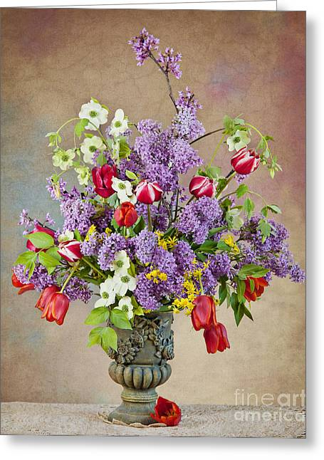 Greeting Card featuring the photograph Colors Of Spring by Cheryl Davis